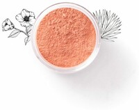 Vezi produsul Blush mineral natural (pink me up) Oleya - 6 g in magazinul driedfruits.ro
