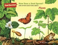 Vezi produsul How Does A Seed Sprout Plants in magazinul biabooks.ro