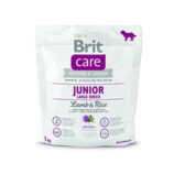 Vezi produsul BRIT Care Junior Large Lamb & Rice 1 kg in magazinul fera.ro